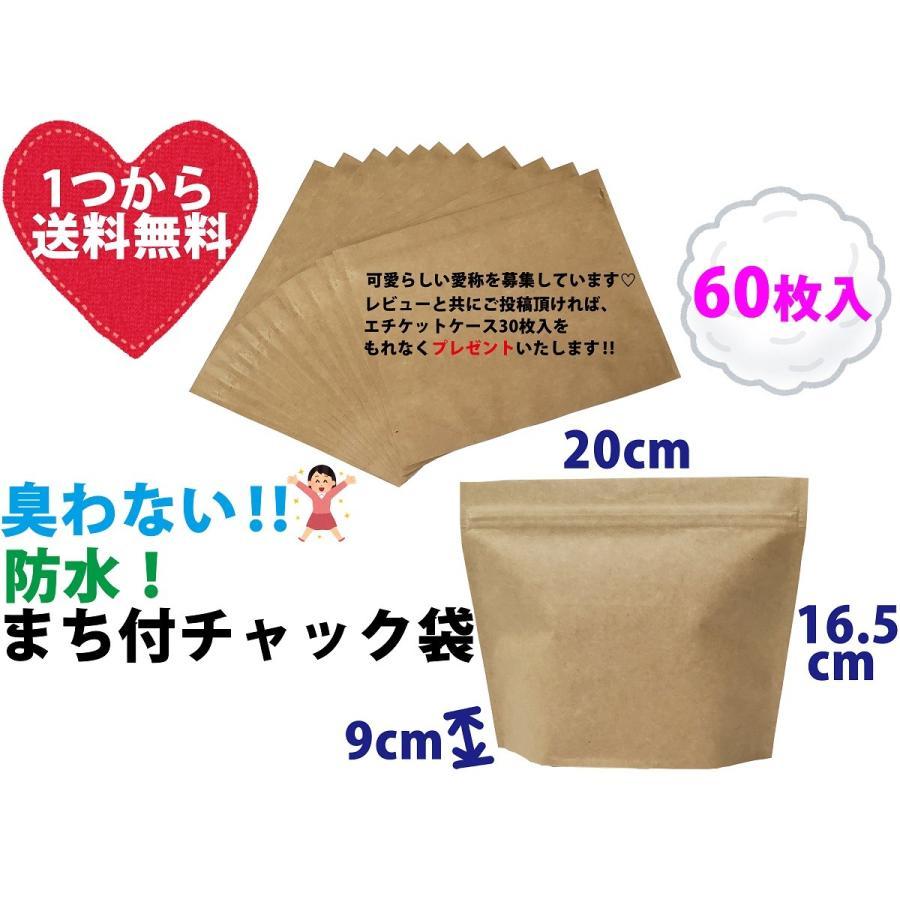 におわない袋 サニタリーボックスのかわりのポーチ 爆買いセール 限定モデル クラフト 60枚セット 防水 防臭チャック袋