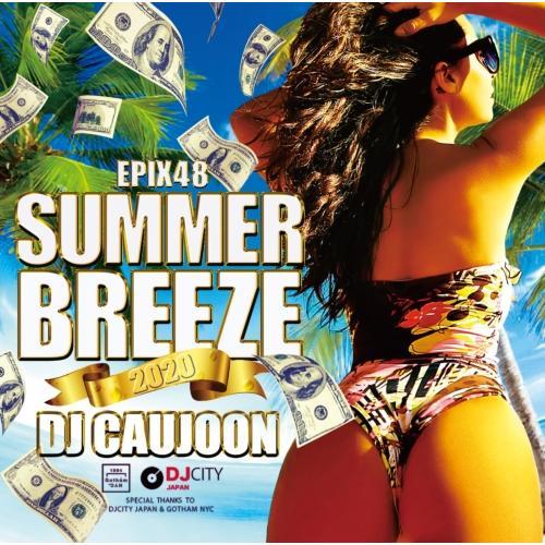ショッピング ワンコイン 夏 サマー 爽快 海岸線 BGM アリアナグランデ など収録 洋楽CD MixCD 48 -Summer 2020- Caujoon DJ 12 Breeze Epix M便 2 海外輸入