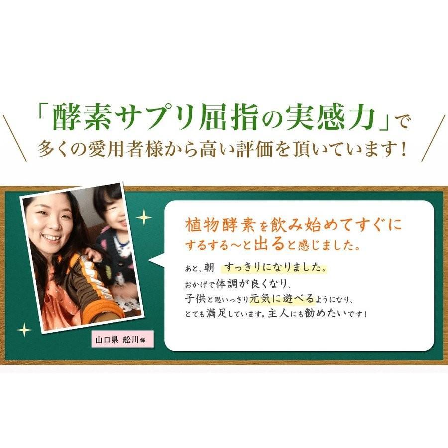 酵素サプリメント みやびの植物酵素サプリ100 メール便なら送料330円 miyabi-store 08