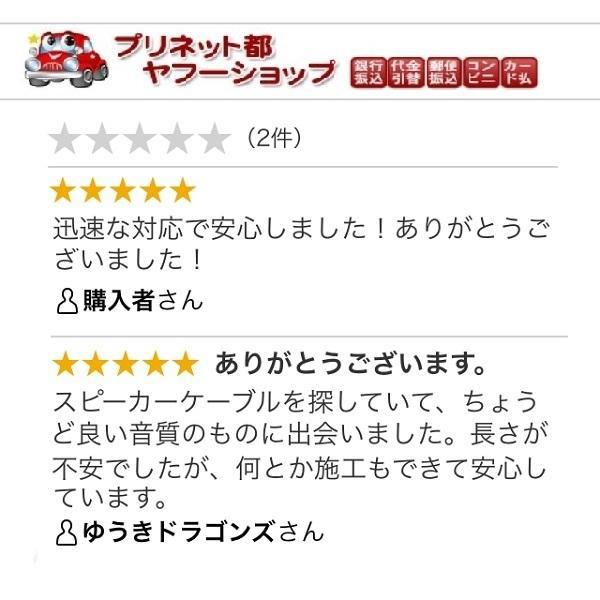 16Gスピーカーケーブル 10m SC-1601 CatchHunter 色:スケルトンクリア|miyako-kyoto|07