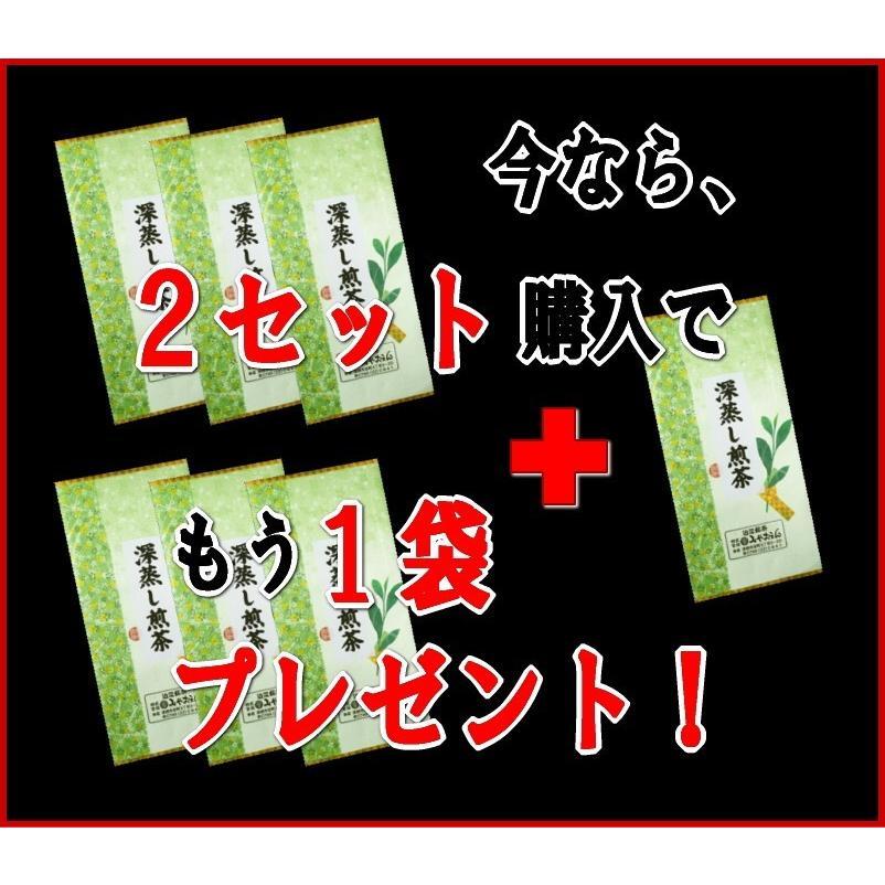 【クーポン利用で30%OFF】深蒸し煎茶100g×3袋セット【ふるさと名物商品】「滋賀の幸」|miyaoen|02