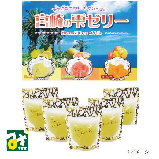 物品 ゼリー 宮崎の雫 日向夏ゼリー 2434400000427 5個入 今だけ限定15%OFFクーポン発行中