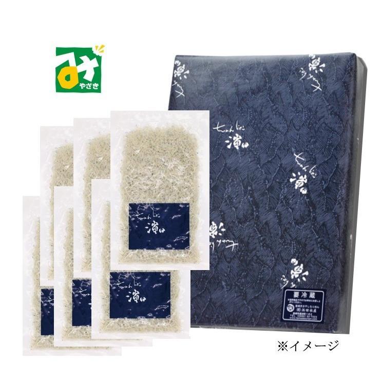 ちりめん 冷蔵 浜ちり100g×6袋入 浜田水産