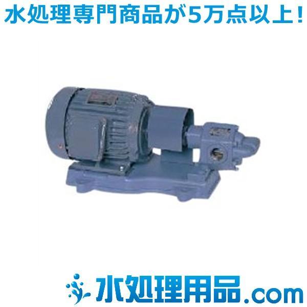 エバラポンプ GPE型 歯車ポンプ 60Hz 25GPE6.75B