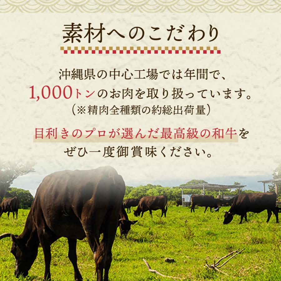 お中元 2021 プレゼント お肉 ギフト バーベキュー BBQ 食材 和牛 黒毛和牛 牛肉 海鮮 野菜 人気 焼肉セット 送料無料 通販 敬老の日 お歳暮 bbq01|mizutomi-meat|06