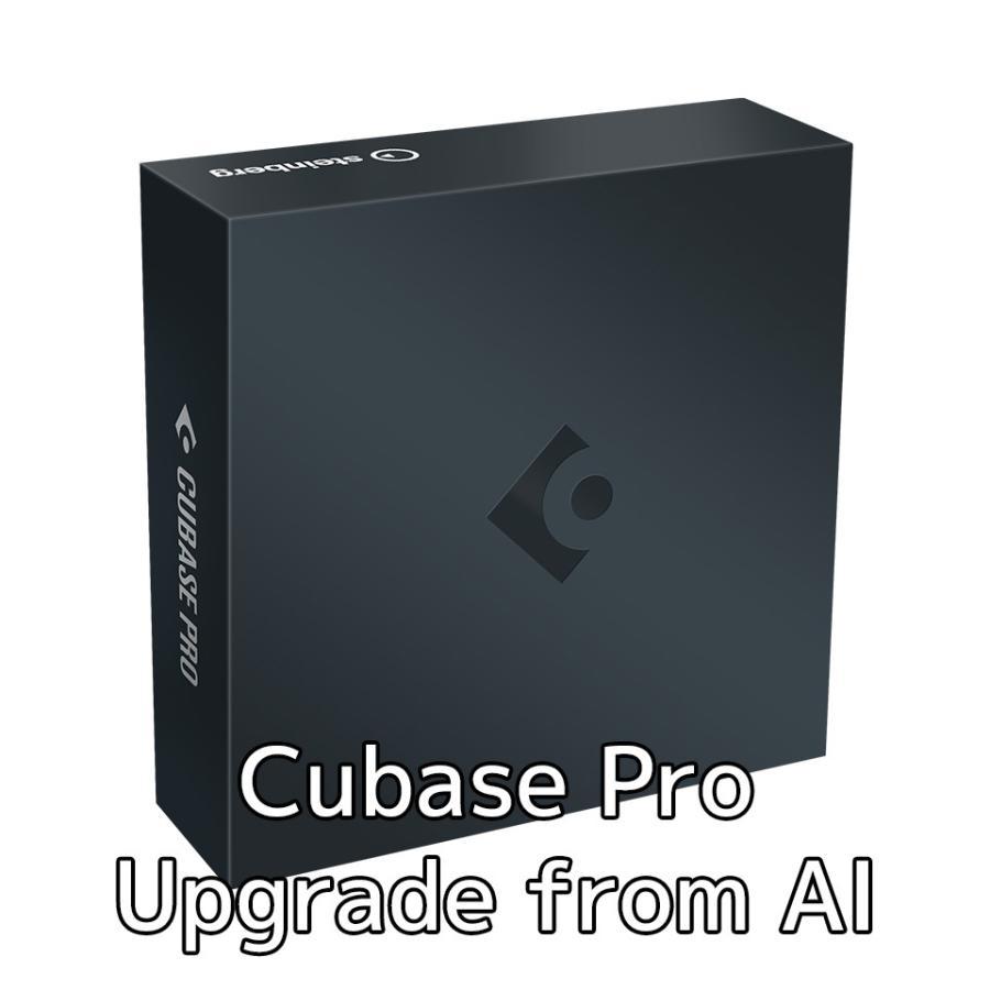 好評 Steinberg スタインバーグ Cubase Pro AI 11 品質保証 UG from