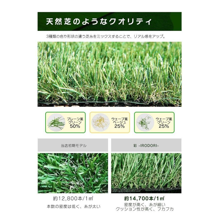 防炎リアル人工芝 [U字ピン20本入] 1m×10m 芝丈36mm [彩-IRODORI-] UV ロールタイプ人工芝 綺麗 高密度 高級 芝|mobimax|10