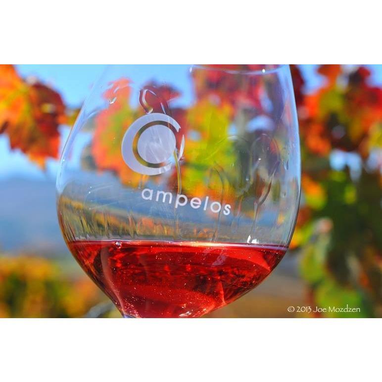 白 ワイン アンぺロス セラーズ ヴィオニエ サンタバーバラカウンティ Ampelos 2017 SB County Viognier(アメリカ カリフォルニア)wine|moesfinewines|06