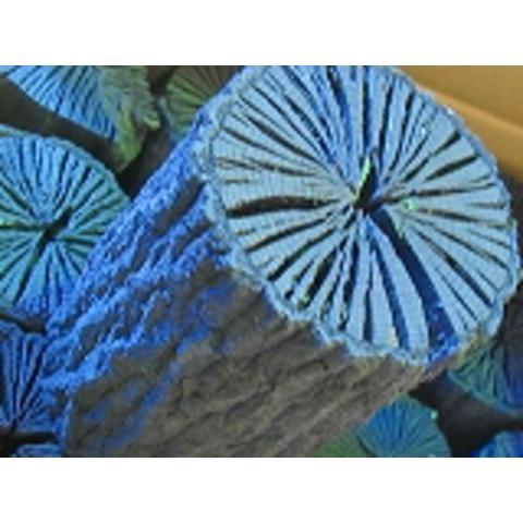 クヌギ、茶道用大 木炭 口径15cm 直10cm前後 10kg×9箱−−90kg国産伊予クヌギインテリア、お飾り、消臭、調湿