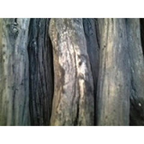 土佐備長炭(太丸)12kg長さ:24cm位3,0〜6、0cm x 2箱