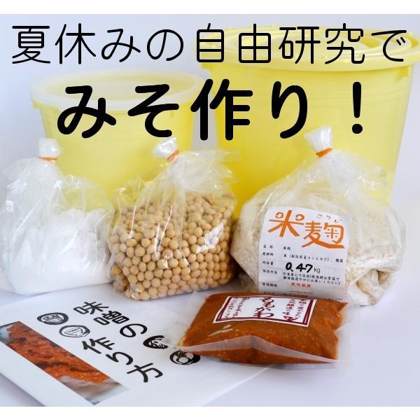 手作り味噌キット 夏休み自由研究版 年間定番 出来上り1.6kg用 出荷