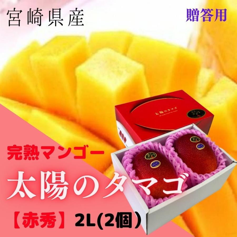 完熟マンゴー 太陽のタマゴ セールSALE%OFF 赤秀 2L 早割クーポン 約350g以上×2個 糖度15度以上 JA宮崎 発送は5月中旬から 予約販売