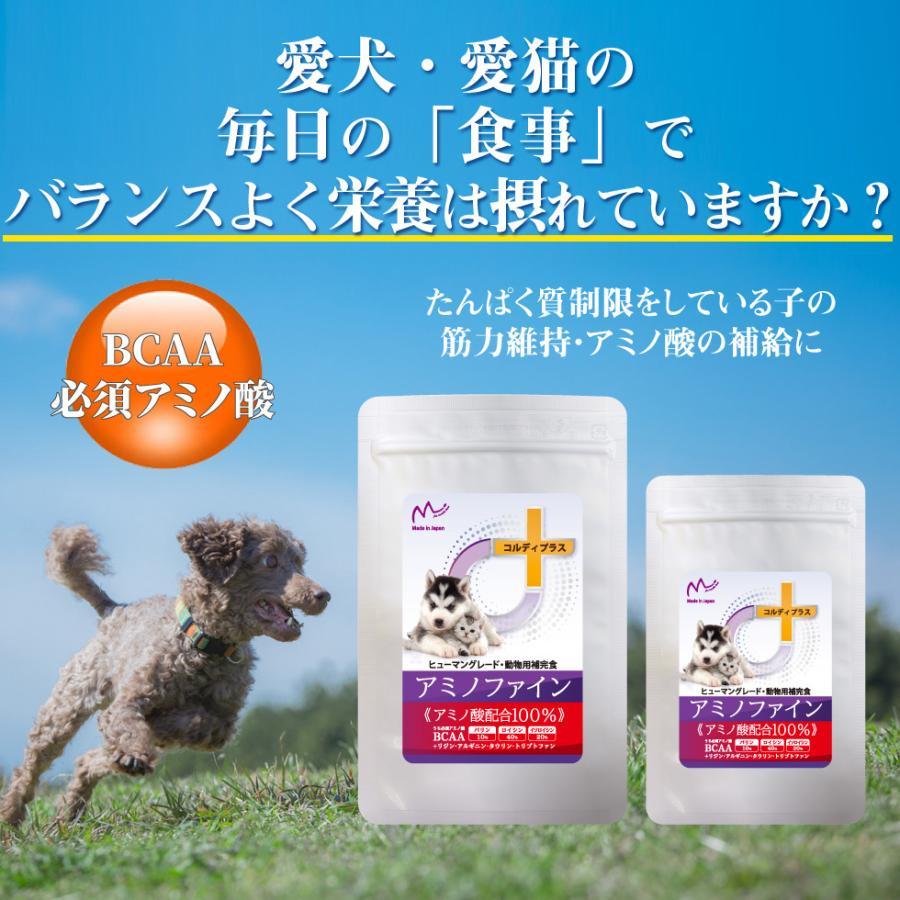 犬 猫 ペット 用 BCAA アミノ酸 サプリメント サプリ 健康維持 腎臓 療法食 タンパク質制限 栄養補給に<アミノファイン100g>|monolith-net|03