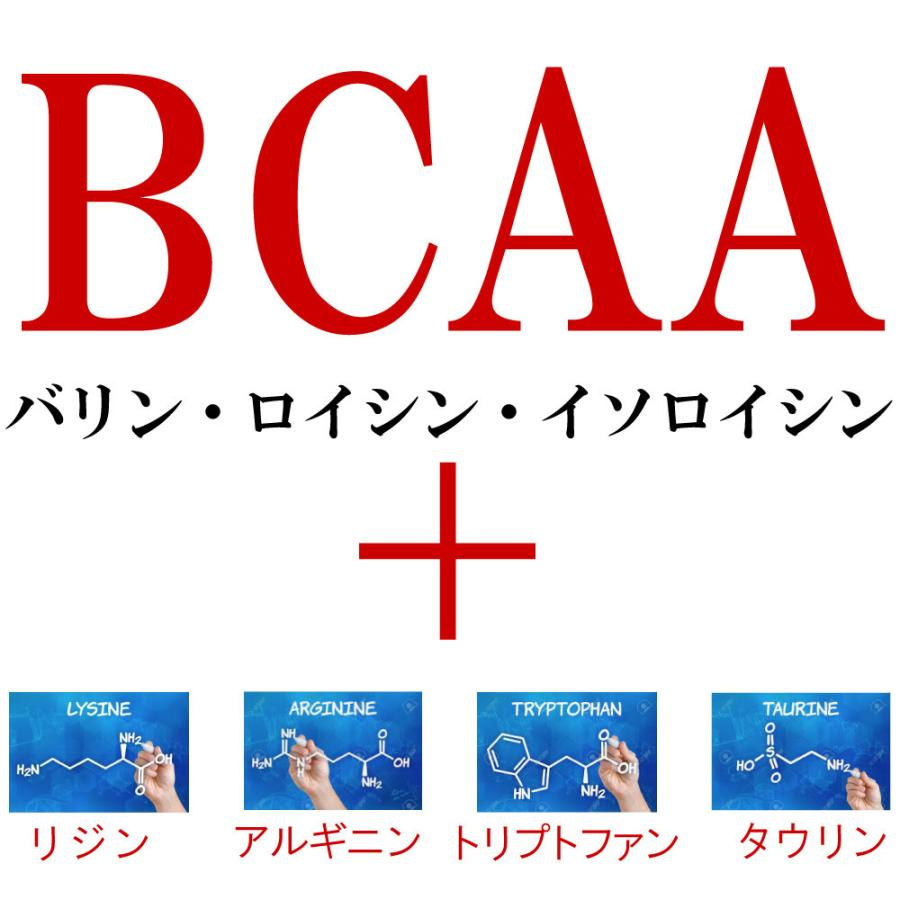【倍倍ストアでP最大12倍】犬 猫 ペット 用 BCAA アミノ酸 サプリメント 健康維持 腎臓療法食 タンパク質制限 栄養補給に<アミノファイン25g>|monolith-net|12