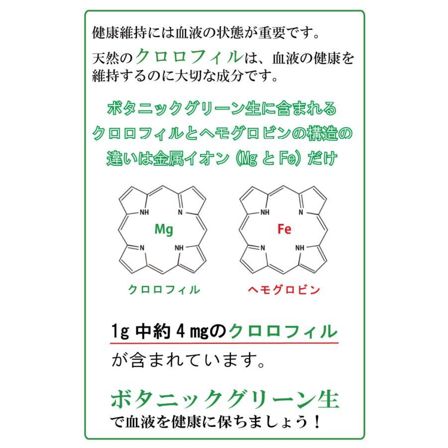 【本日最大12倍】ボタニックグリーン生(微粉末)180g ビタミン・酵素の補給|monolith-net|10