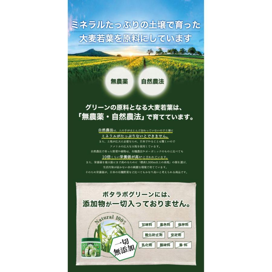 【本日最大12倍】ボタニックグリーン生(微粉末)180g ビタミン・酵素の補給|monolith-net|12