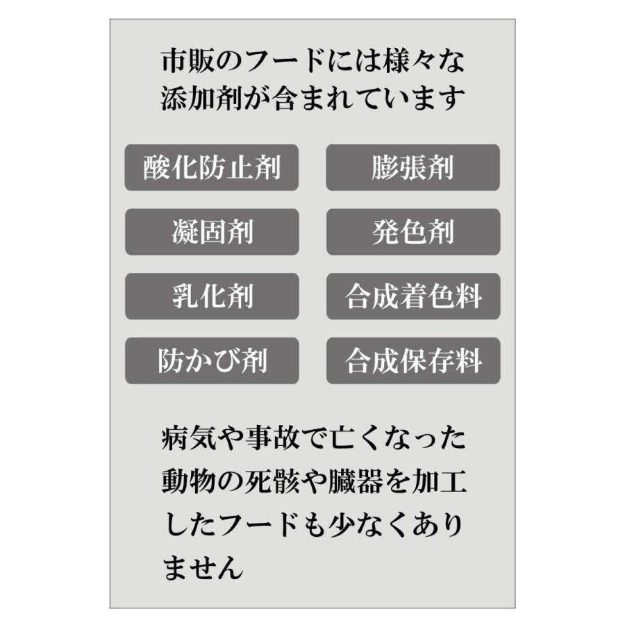 【本日最大12倍】ボタニックグリーン生(微粉末)180g ビタミン・酵素の補給|monolith-net|04