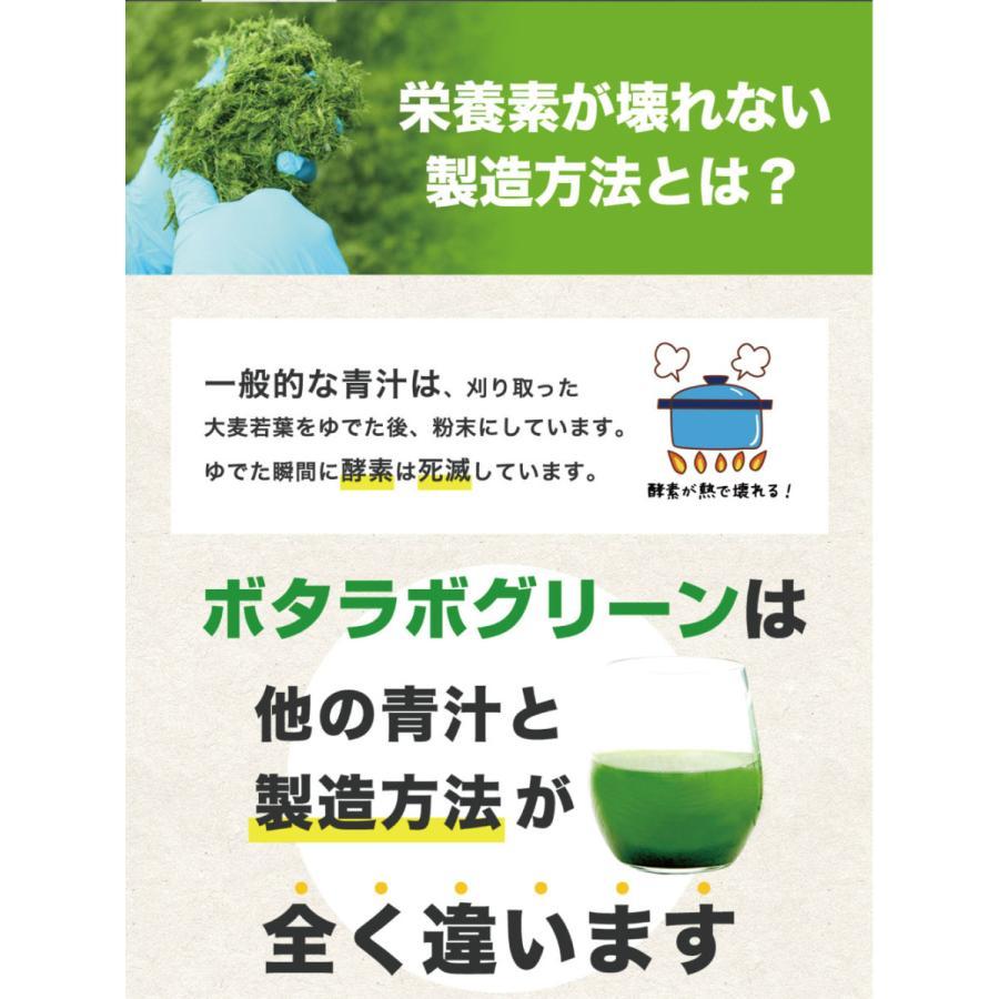 【本日最大12倍】ボタニックグリーン生(微粉末)180g ビタミン・酵素の補給|monolith-net|07