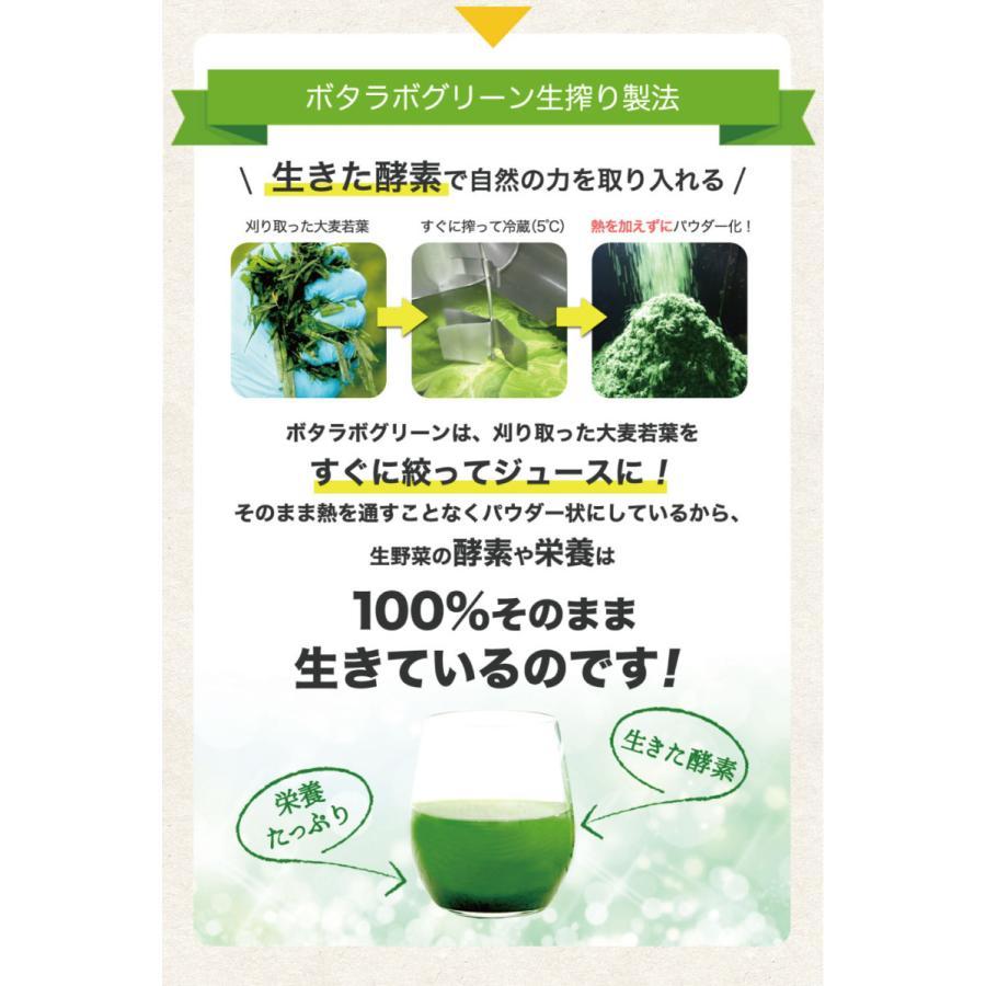 【本日最大12倍】ボタニックグリーン生(微粉末)180g ビタミン・酵素の補給|monolith-net|08