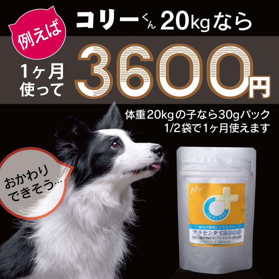 犬猫の健康を維持し、肝臓と皮膚を守るサプリ (別途送料で)あすつく可<プラセンタ12000(30g)> monolith-net 11