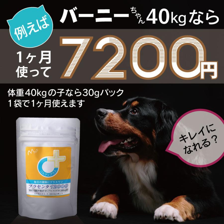 犬猫の健康を維持し、肝臓と皮膚を守るサプリ (別途送料で)あすつく可<プラセンタ12000(30g)> monolith-net 13