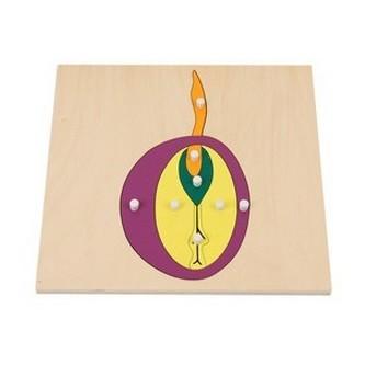 モンテッソーリ教具 --物パズル(種)-- 幼稚園 保育園 幼児教育 教材 教具