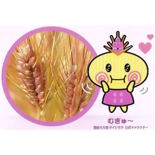うどん県のダイシモチ(讃岐もち麦)10キロ大袋 (モチモチ美味しくて食物繊維がたっぷりです)|morie|03