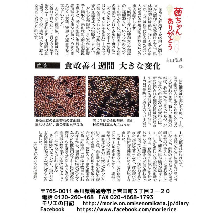 菌ちゃんげんきっこ(ネコポス)|morie|08