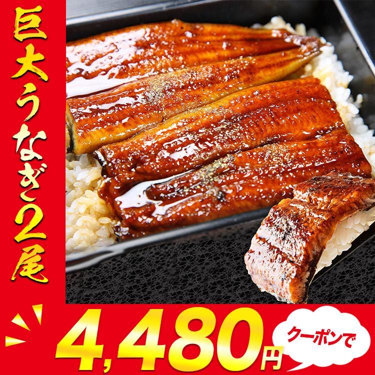 巨大うなぎ蒲焼 2尾×約400g 2本 計約800g 送料無料 ウナギ 鰻 お取り寄せ 食品 備蓄 敬老の日ギフト