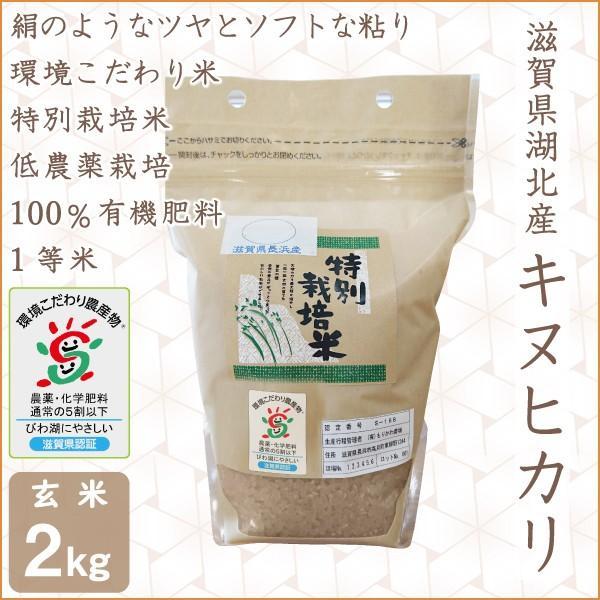 低農薬 キヌヒカリ 2kg 令和2年産 玄米 100%有機肥料 特別栽培米 1等米 滋賀県環境こだわり米 morikawa-noujou