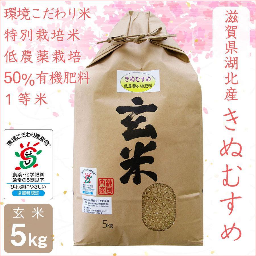 低農薬 きぬむすめ 5kg 令和2年産 玄米 50%有機肥料 特別栽培米 1等米 滋賀県環境こだわり米 morikawa-noujou