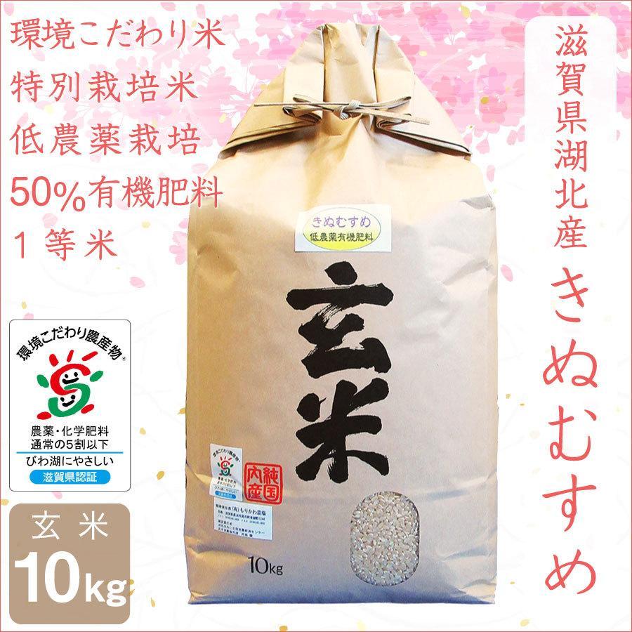 低農薬 きぬむすめ 10kg 令和2年産 玄米 50%有機肥料 特別栽培米 1等米 滋賀県環境こだわり米 morikawa-noujou
