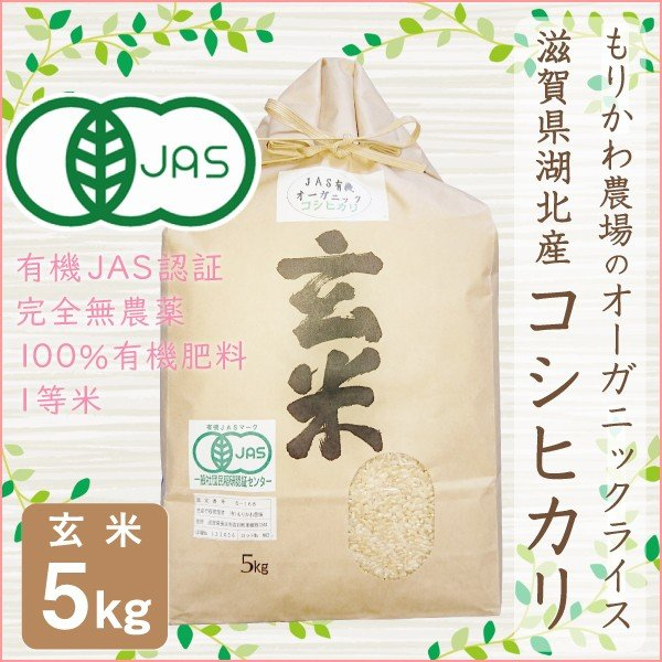 有機JAS認証 オーガニックライス コシヒカリ 5kg 玄米 令和2年産 無農薬有機栽培 1等米|morikawa-noujou