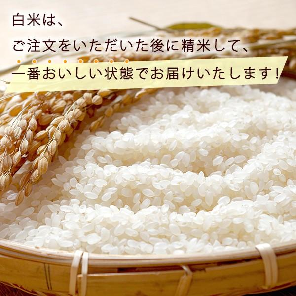 有機JAS認証 オーガニックライス コシヒカリ 2kg 白米 令和2年産 無農薬有機栽培 1等米|morikawa-noujou|02