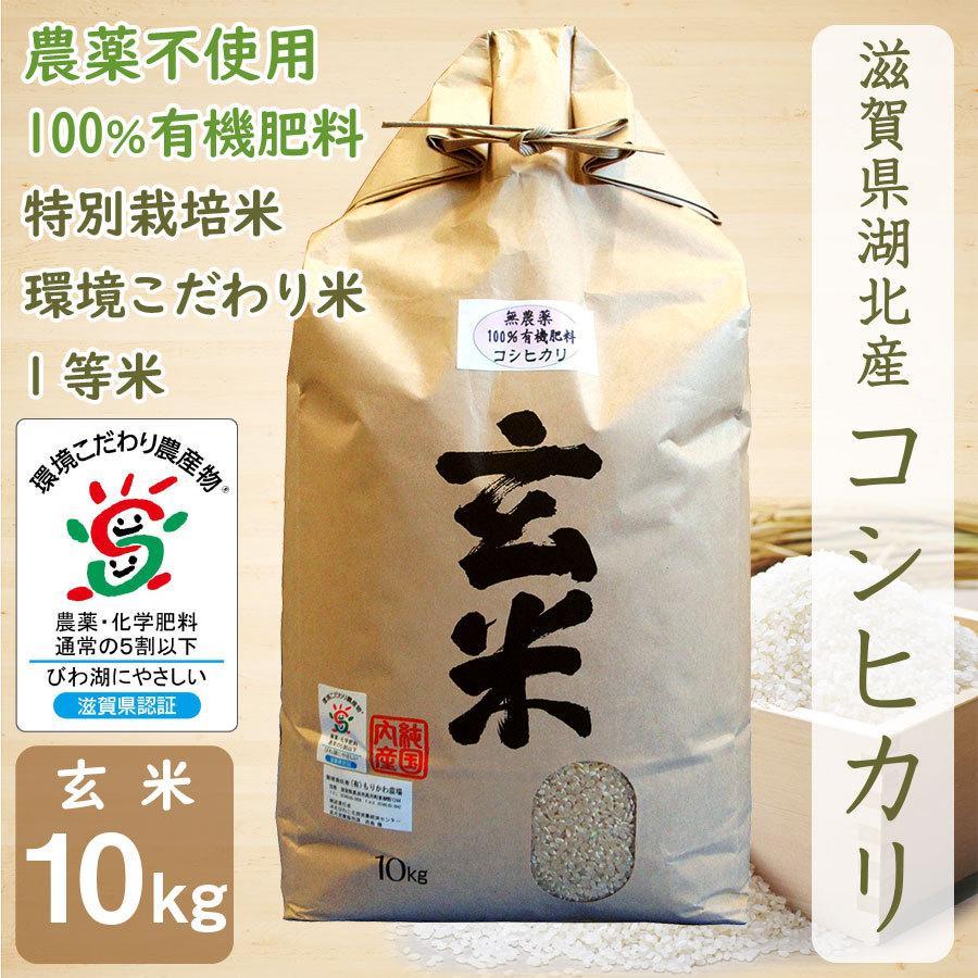 無農薬 コシヒカリ 10kg 令和2年産 玄米 農薬不使用 100%有機肥料 特別栽培米 1等米 滋賀県環境こだわり米 【滋賀の幸】|morikawa-noujou