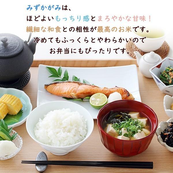 令和2年 滋賀県産 みずかがみ 玄米 10kg|morikawa-noujou|02