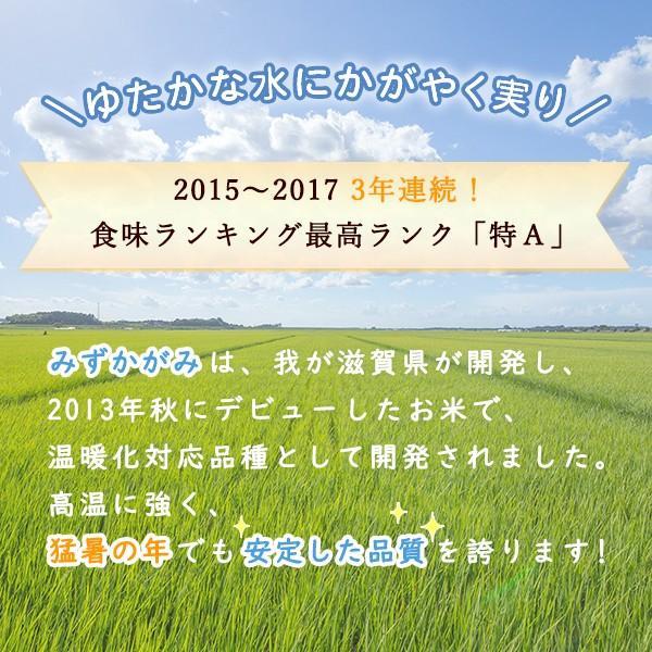 令和2年 滋賀県産 みずかがみ 玄米 10kg|morikawa-noujou|03