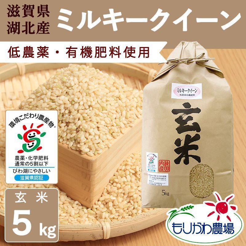 令和2年 滋賀県産 ミルキークイーン 玄米 5kg|morikawa-noujou