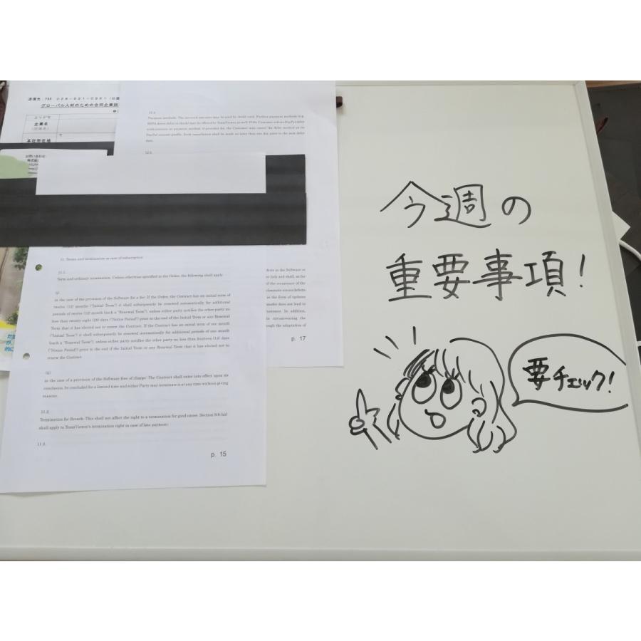 だんだん畑マグネット壁収納 特許取得済 おしゃれ スッキリ整理 morinootomodachi 02