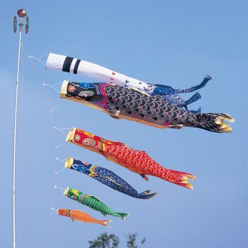鯉のぼり こいのぼり 錦鯉 天 手描き本染め鯉 2間半 4.5m 8点 5色 鯉5匹 浪千鳥吹流し 大型セット
