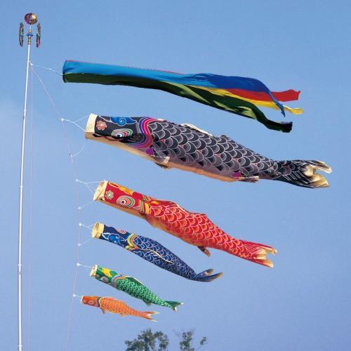 鯉のぼり こいのぼり 錦鯉 天 手描き本染め鯉 2間半 4.5m 8点 5色 鯉5匹 五色吹流し 大型セット