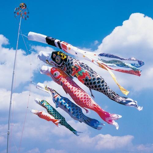 鯉のぼり こいのぼり 錦鯉 羽衣錦鯉 5m 8点 5色 鯉5匹 金太郎付 浪千鳥吹流し 大型セット