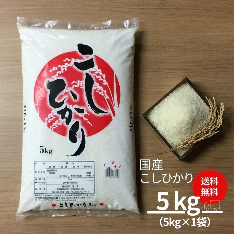 米 5kg 国産 こしひかり コシヒカリ 送料無料 お米 令和2年産