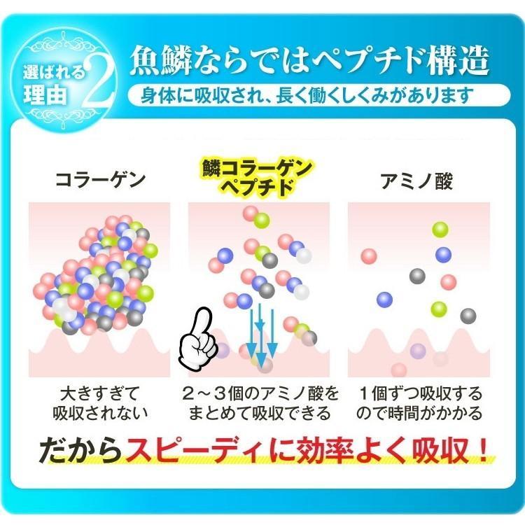 【送料無料】プルオイ(puruoi)ナノコラーゲン リピートパック(約31日分) 低分子コラーゲン コラーゲンサプリ フィッシュコラーゲン 鱗コラーゲン|motherleaf|09