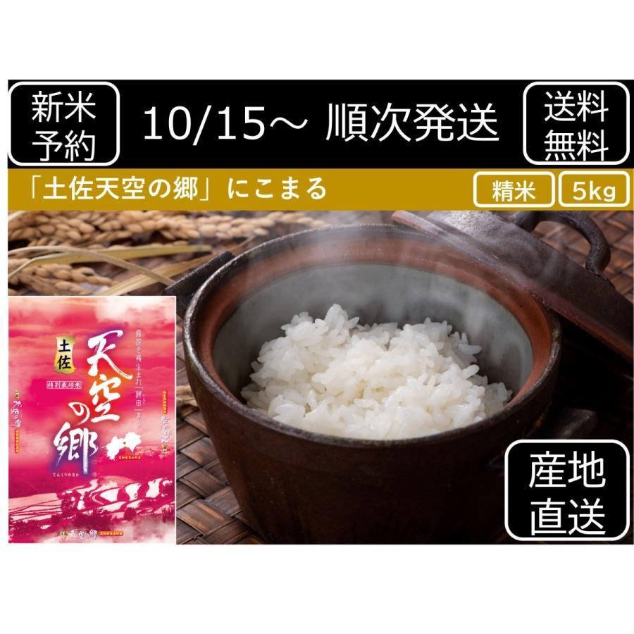 【精米】新米 予約 米 5kg にこまる 土佐天空の郷 令和3年産 精米5kg motoyama