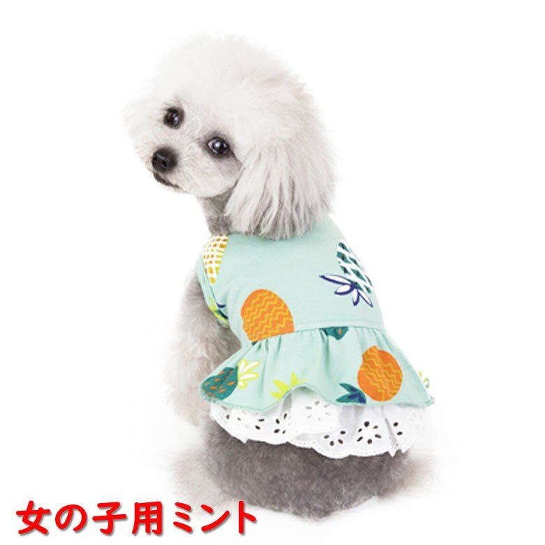 犬服 ペット服 ペット用品 秋冬 mowmow 女の子用 男の子用 ワンピース スカート パイナップル かわいい dcos0029|mowmow0731|04