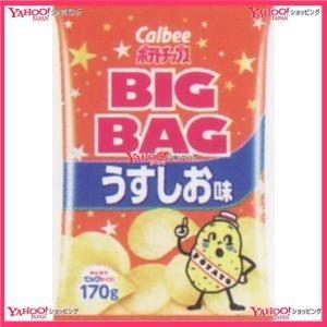 170G ビッグバッグうすしお味