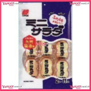 2枚X11袋 ミニサラダ九州醤油味