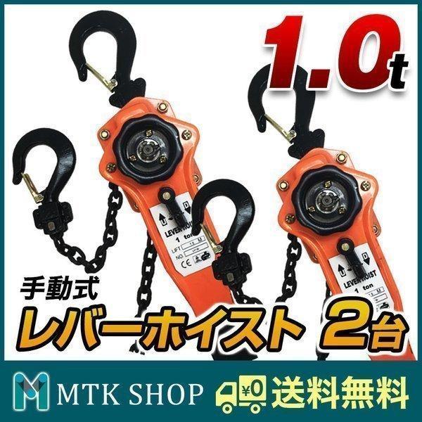レバーホイスト 1t 1t 1t 2台 セット 手動式 チェーンブロック 防災グッズ (LH100-2) 4c8
