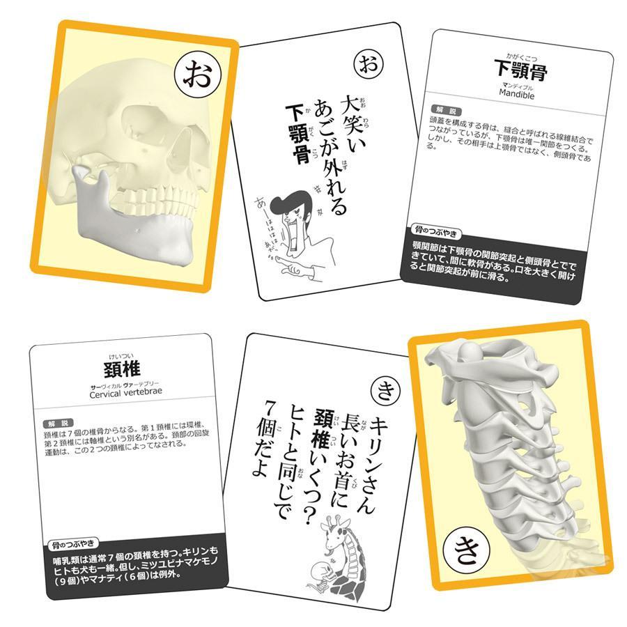 【セットでお得】筋肉かるた&骨かるた特別セット muscle 04